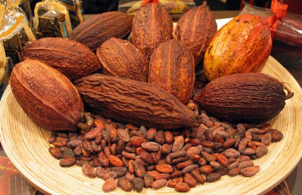 cocoa beans 620-400