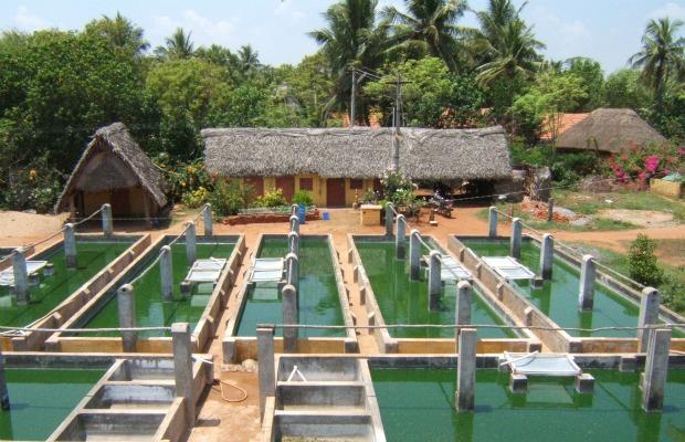 cultivo de spirulina 620-400