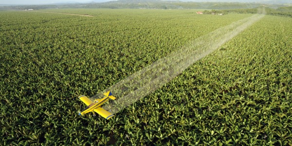 PESTICIDE fumigation plane 600300