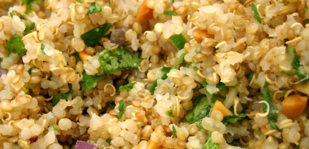 quinoa cocida con verduras 620-300