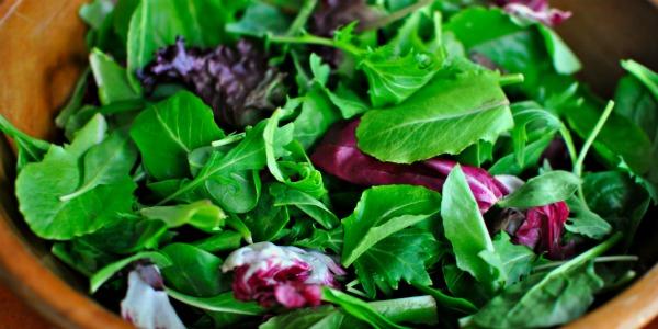 salad-leaves 600-300
