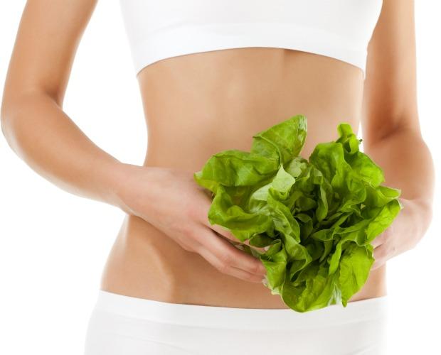 cuerpo saludable lechugas 620+500