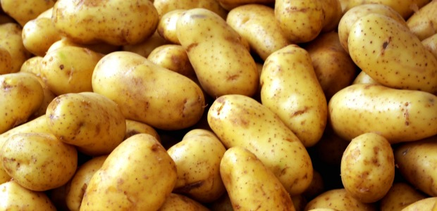 potatoes 620+300