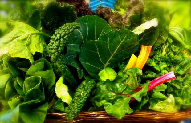 leafy greens 620+400