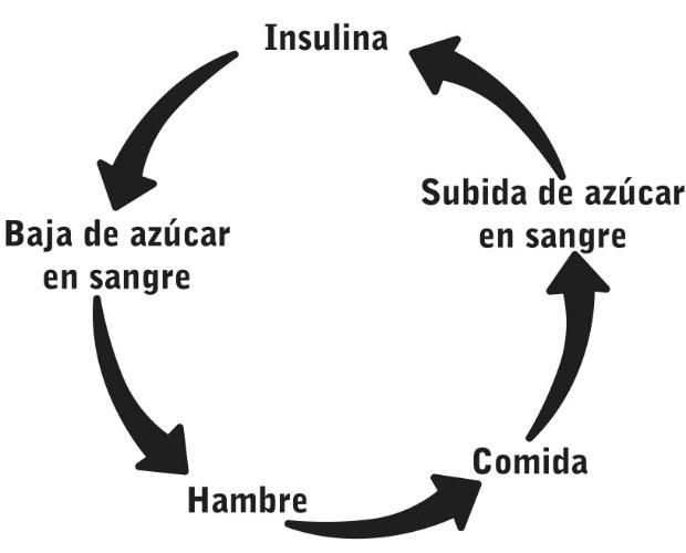 grtafico insulina  620+500