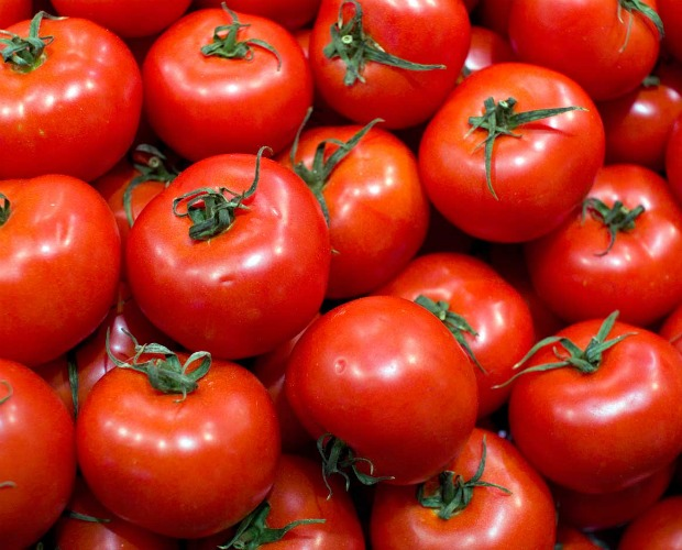 Resultado de imagen para imagen de tomates maduros