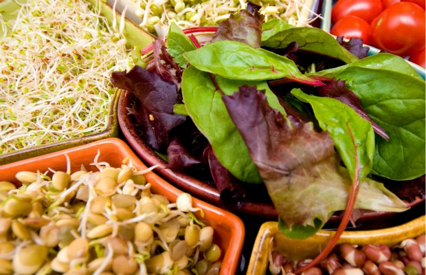 living foods sprouts 620+400