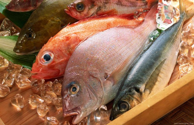 pescadps varios frescos 620+400