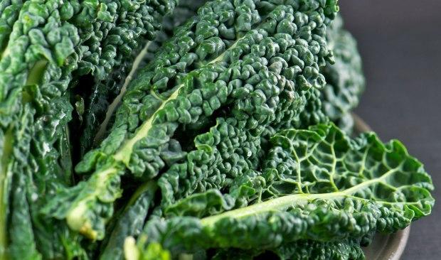 Kale bonita 620+400